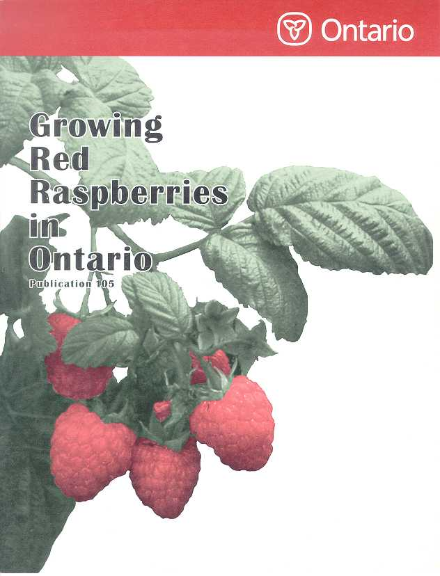 Front cover image of Publication 105, Growing Red Raspberries in Ontario