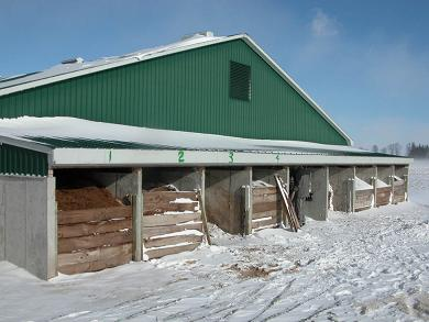 Picture shows the end of a swine barn, in January, with 9 separate sections or bins that are used for composting.  Each bin has a wooden gate to keep substrate inside.