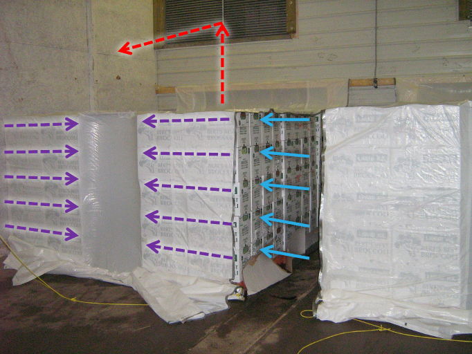 Figure 2 is a photo of a real-life tunnel horizontal airflow system, similar to the one described in Figure 1. Coloured arrows have been superimposed on the image to show how cold, warmed and hot air travels through the system.