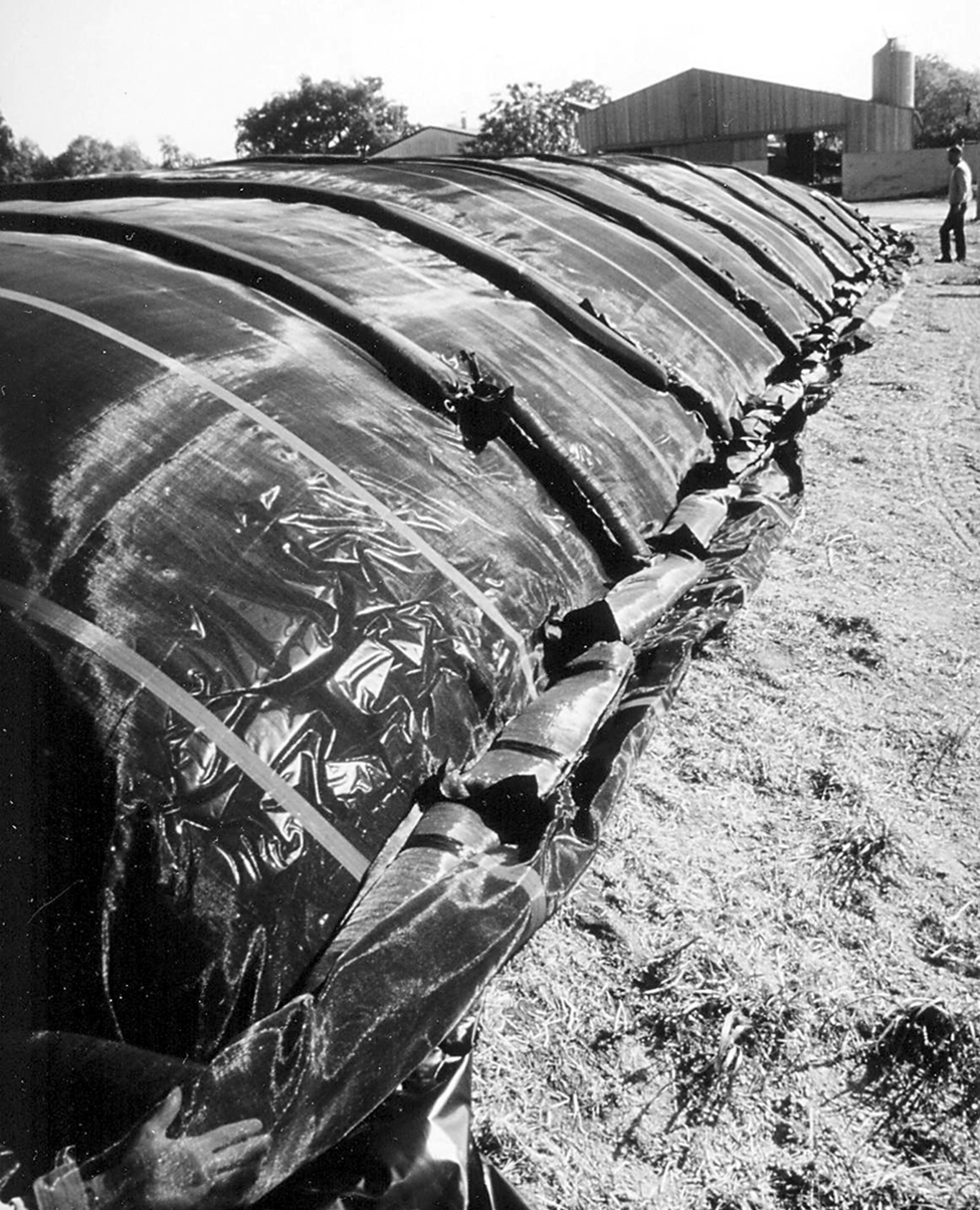 Figure 5.  Photo of a tarpaulin and sausage bag system for silage protection. This photo shows a large black tarp covering a horizontal storage. Long sand filled bags (shaped like oversize sausages) are shown placed in rows on top of the tarps to keep it down.