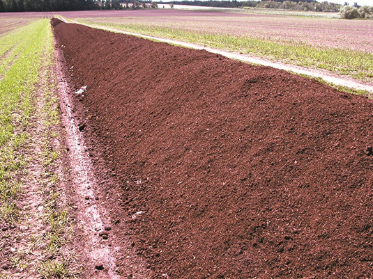 Photo of a long windrow of solid manure compost in a field.