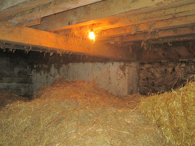 This is a photograph of a light fixture installed in the straw storage area of a barn.  The light fixture consists of an incandescent bulb screwed into a fixture base.  The fixture base is hanging from the floor joist above by its electrical supply cable.   There is no protective cover, screen or cage around the light bulb.  There is straw and cobwebs directly surrounding the operating light bulb.  There is a large quantity of loose straw being stored approximately 1 m directly below the light bulb.