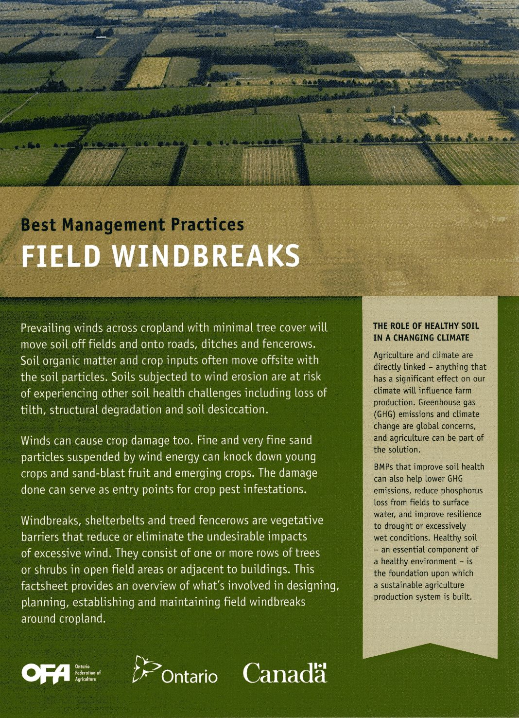 Image of Field Windbreaks Book
