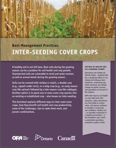 Image of Inter-seeding Cover Crops