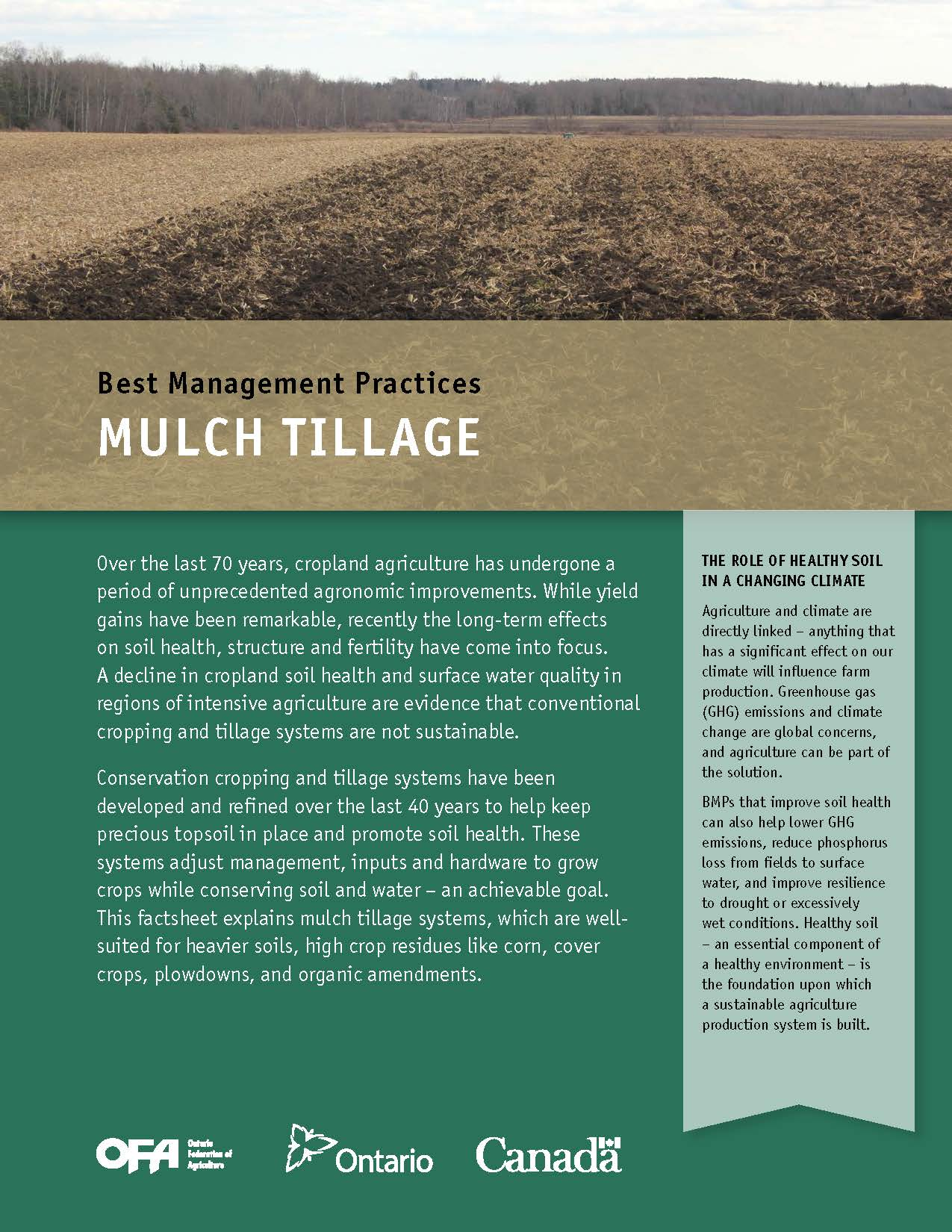 Image of Mulch Tillage