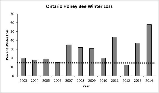 Percentage of Ontario commercial honey bee colonies which did not survive the winter (winter loss).