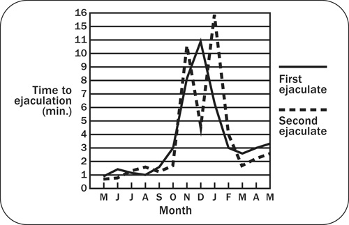Graph showing the effect of season on sexual behaviour as measured by time to ejaculation.