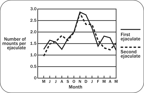 Graph showing the effect of season on sexual behaviour as measured by number of mounts required per ejaculation.