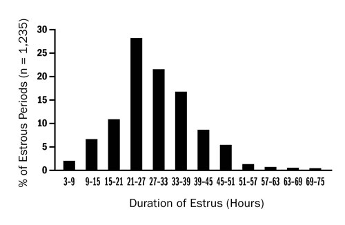 Figure 2: This graph shows percentage of ewes with different hours of estrus.  About 2% of ewes had estrus 3-9 hours, 7% had estrus 9-15 hours, 11% had estrus 15-21 hours, 27% had estrus 21-27 hours, 22% had estrus 27-33 hours, 17% had estrus 33-39, 8% had estrus 39-45 hours, 6% had estrus 45-51 hours, 2% had estrus 51-57 hours, with the remaining few ewes having estrus 57-75 hours long.