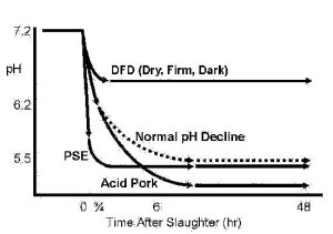 Figure 1. The relationship between post-mortem changes in muscle pH and pork quality. (Source: Austin Murray, Lacombe Research Centre, Agriculture and Agri-Food Canada)