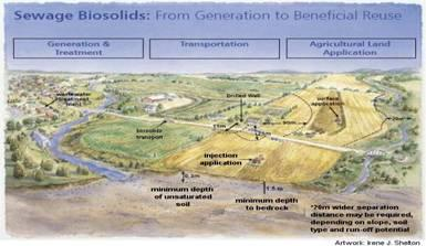 Sewage Biosolids: From Generatin to Beneficial Reuse