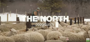 The North - Opportunities